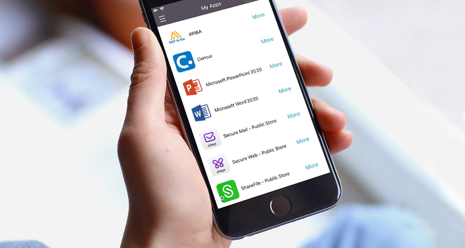 Workforce Mobility with Citrix