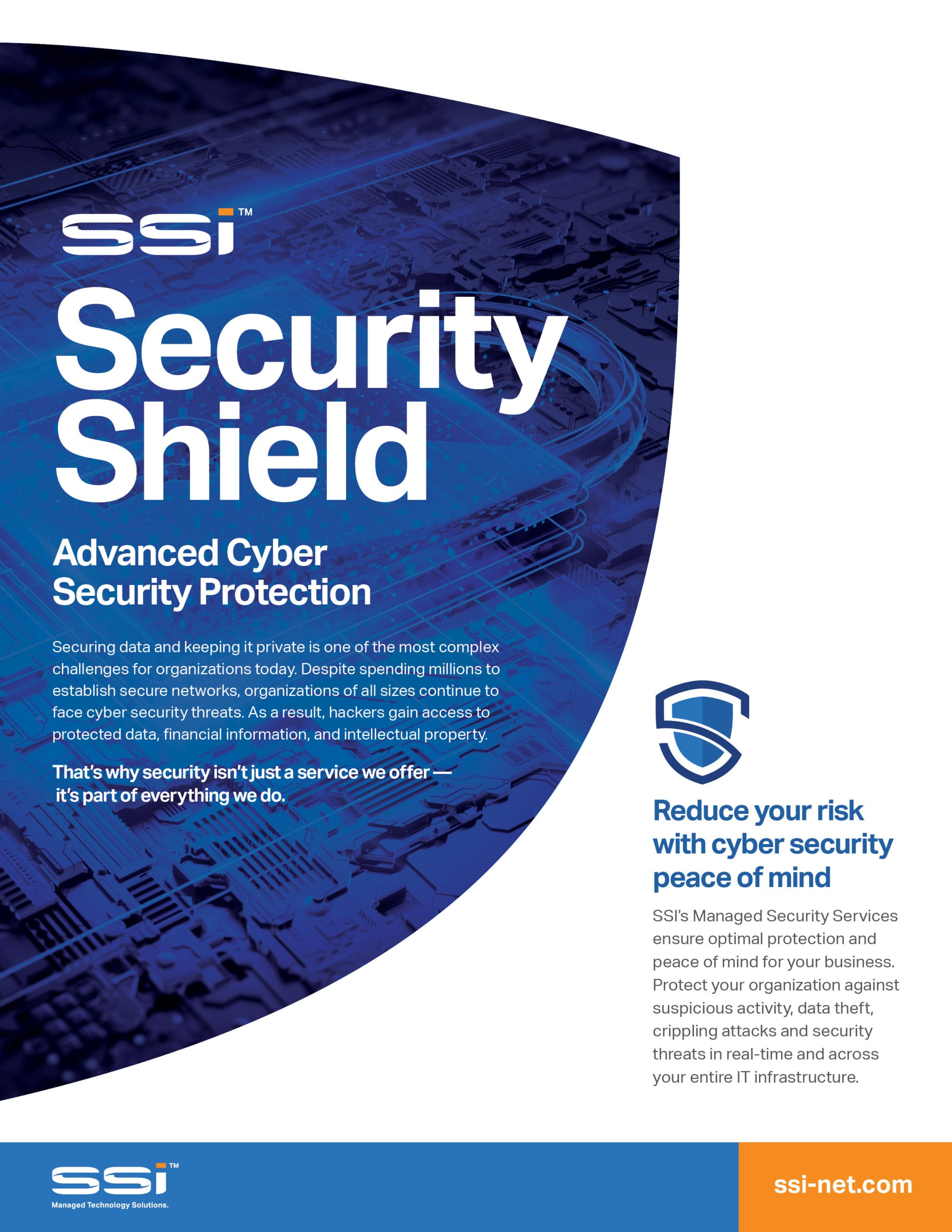 Download SSI's Security Shield Datasheet